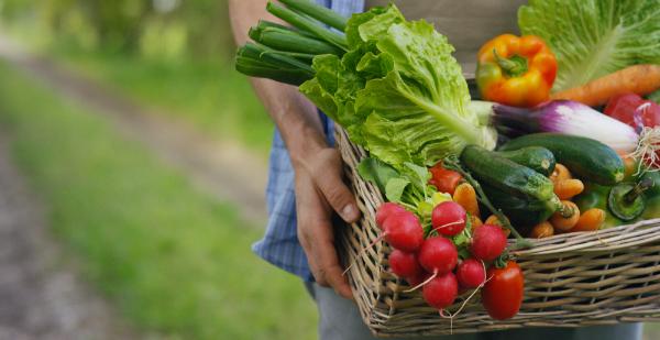 Mit dünsten behält Gemüse nicht nur seine Farbe, sondern auch seine Vitamine