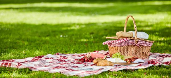 Zu einem Picknick gehört die passende Decke