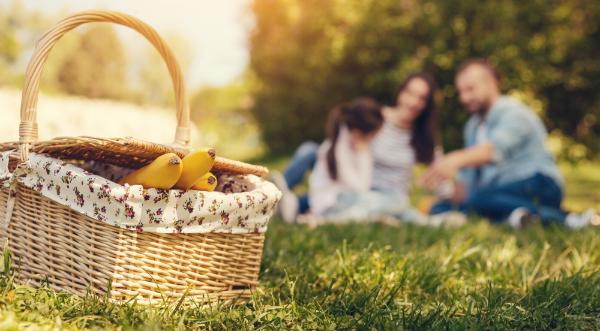Was gehört in einen Picknickkorb?