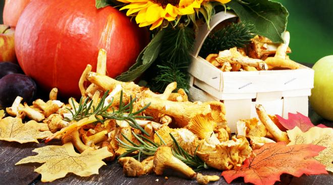 Leckere Rezepte für den Herbst